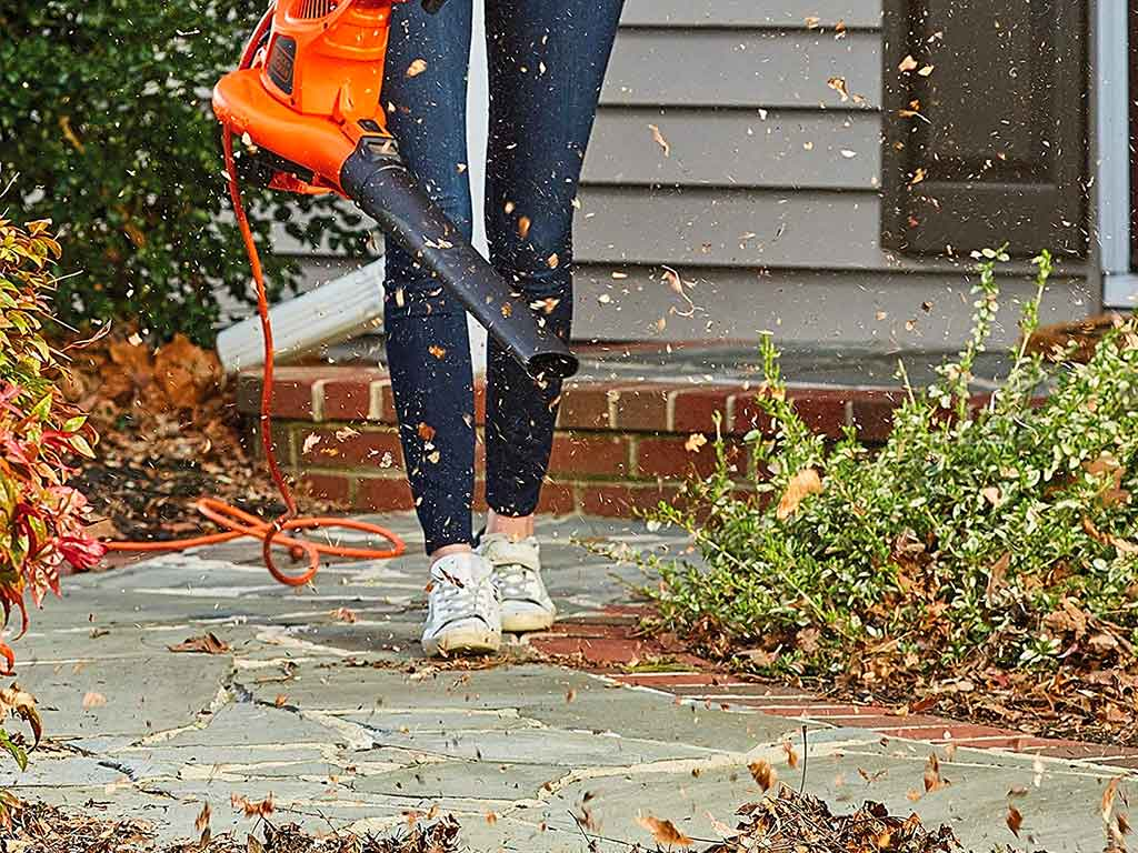 Top 10 Best Leaf Mulcher Blower of 2021 Review